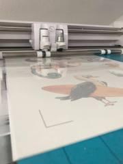 Schneiden mit Print and Cut (oder bei Brother Geräten mit der Scanfunktion)